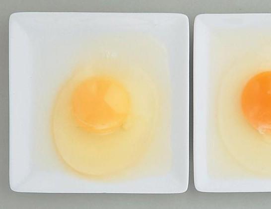 平飼卵の黄身