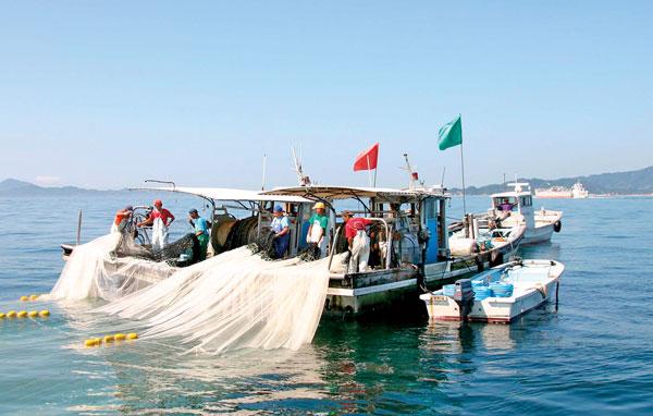 漁船に寄りそう運搬船。漁獲後すぐに加工場へ運び、高鮮度を保ちます。