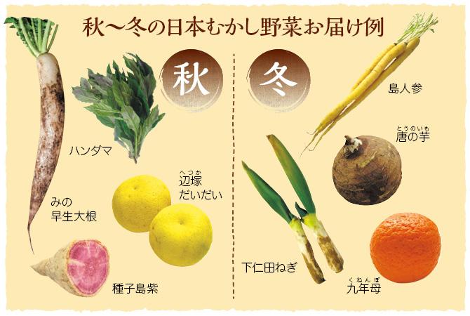 日本むかし野菜のお届け例