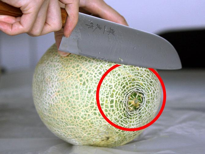 メロンの美味しい切り方2