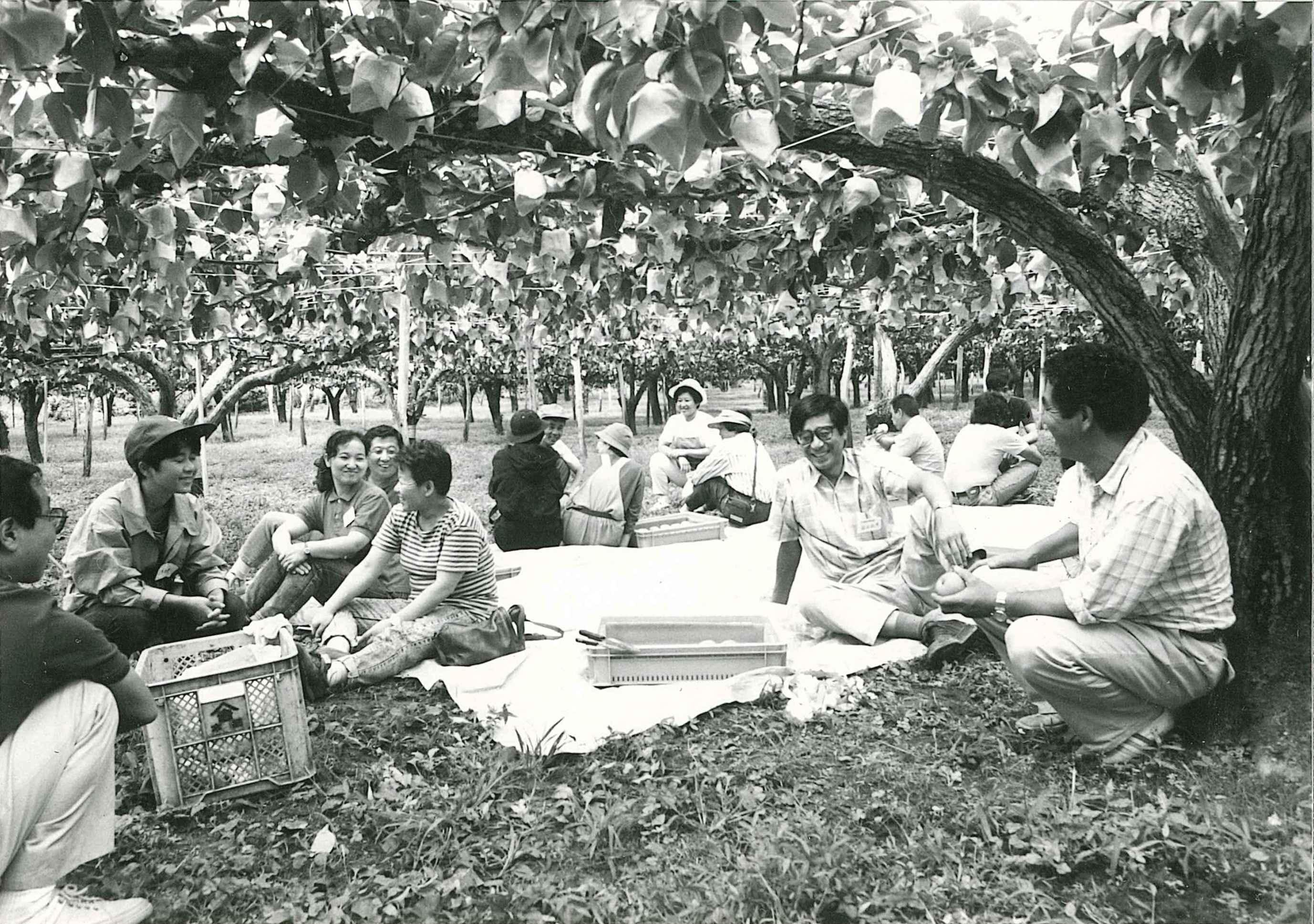 果樹の下で談笑する人々