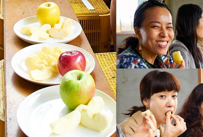 左:食べ比べた3種のりんご。奥からシナノゴールド、ふじ、グラニースミス 右:3種のりんごを食べ比べるゲストの皆さん。酸味のあるグラニースミスは、新鮮なおいしさ!?
