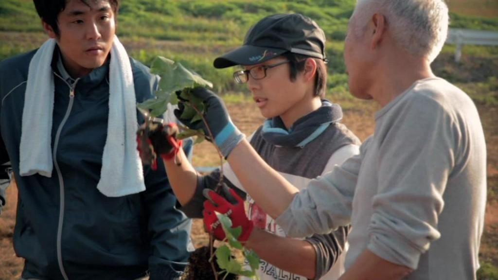 果樹など技術指導の経験豊かな道法正徳さんの監修を受けます。