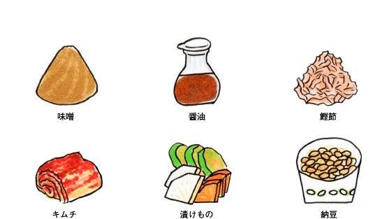 身近な発酵食品
