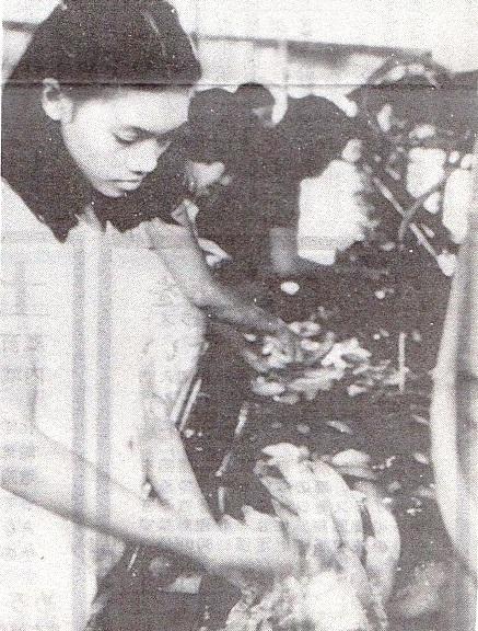 バナナを洗う若い女性