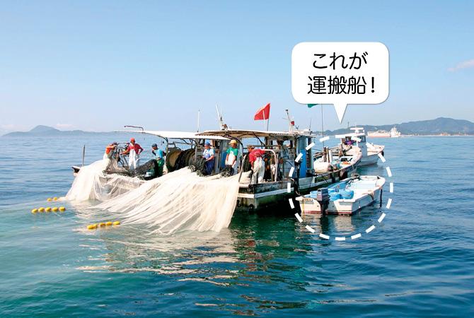 漁船の隣にスタンバイする運搬船