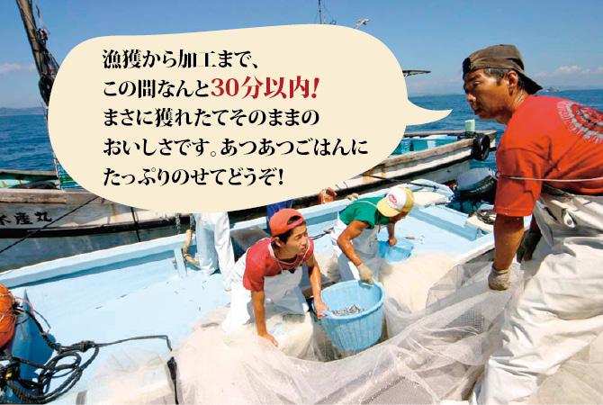 カネモのシラスを獲っている漁師のみなさん