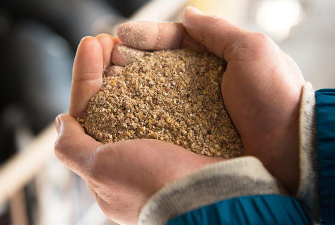 希少な非遺伝子組み換え穀物飼料の使用は、大地を守る会の生産者全員の共通ルールです