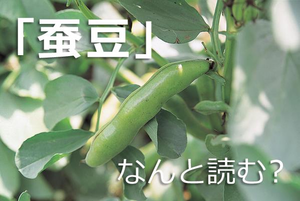 「蚕豆」なんと読む?