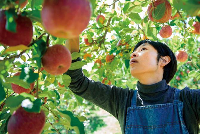 原俊朗さんの兄で、今は亡き志朗さんの後を継いだ、志郎さんのおつれあいの明子さん。 「りんご七会通信」の書き下ろしエッセイも執筆する多彩ぶり。