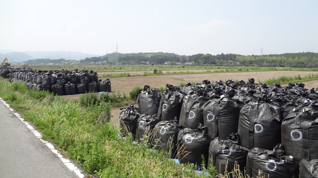 除染で出た放射性物質が袋に詰められ次々に山積みになっています。