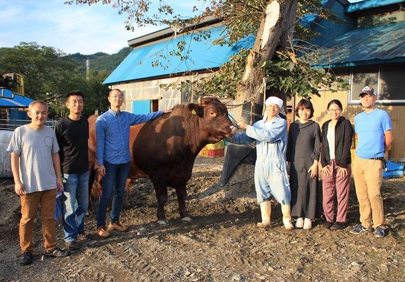 大地を守る会の社員が、9/8~9/11と、9/24~9/25に、久慈市山形町役場や短角牛生産者のところへボランティアに行きました。