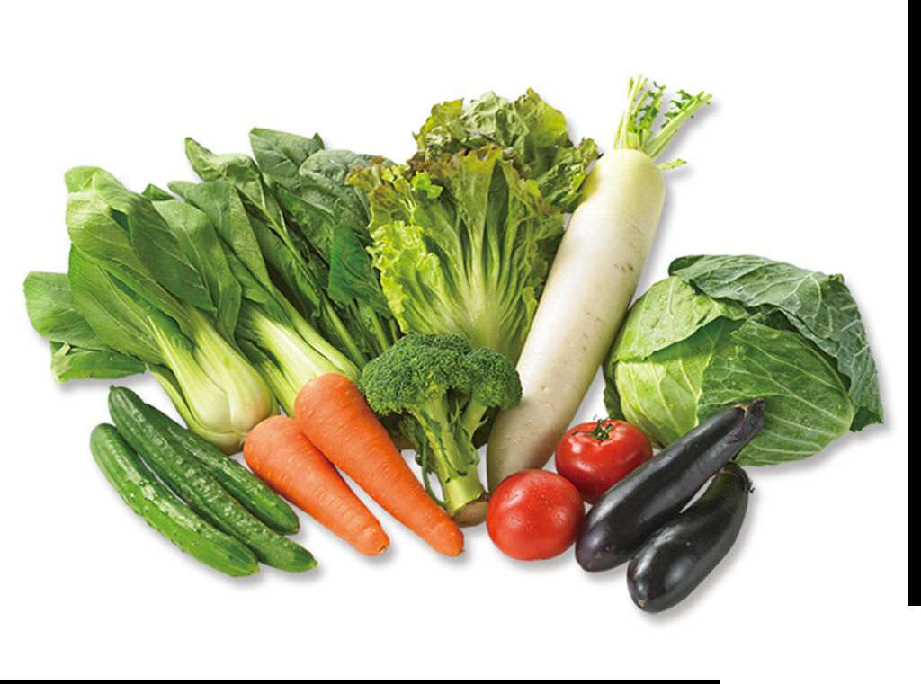 野菜セット,ベジタ