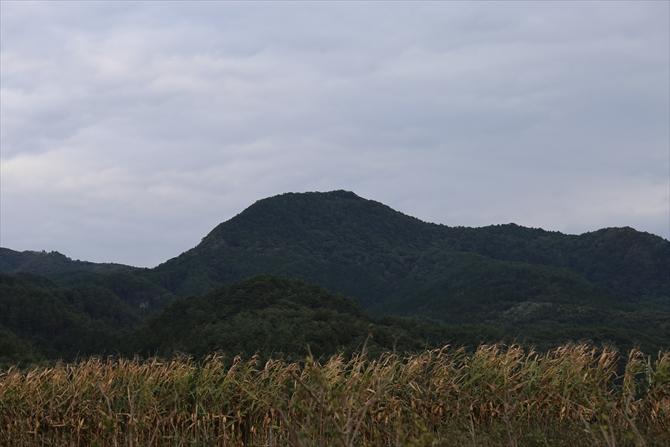 真田用水が出来るまでこの裏山で雨乞いをしていたそうです。