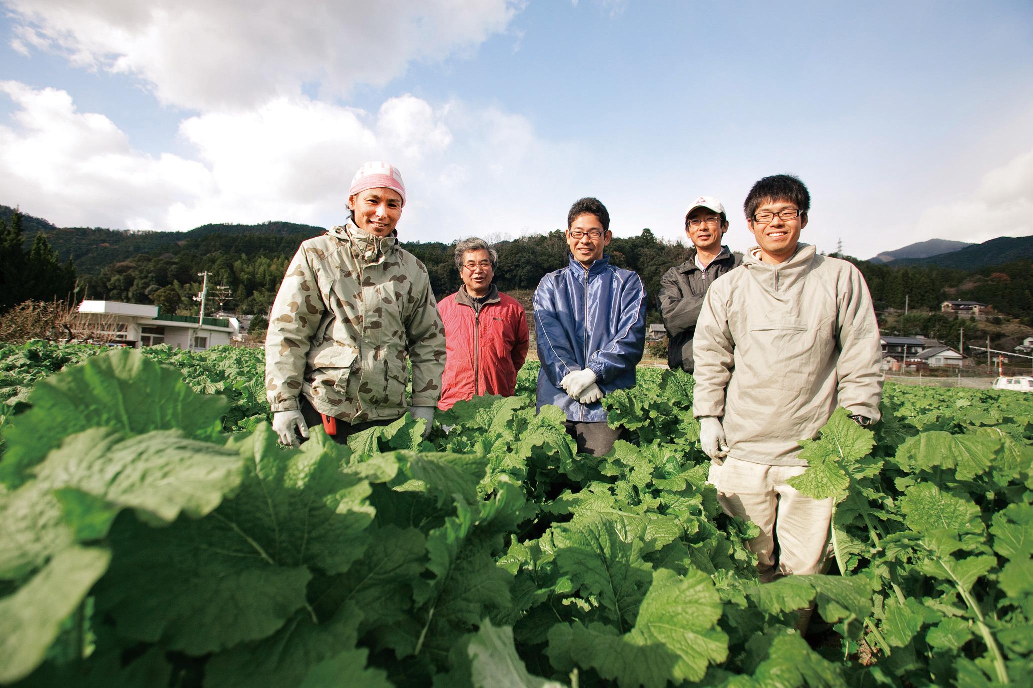 有機農業、有機野菜、有機栽培、有機JAS