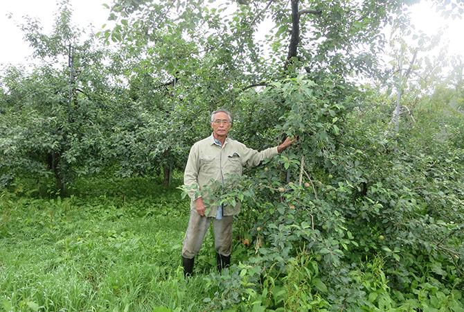 留目昌明さん。りんごの樹とその周りを覆う草たち。土の持つパワーがみなぎっています。