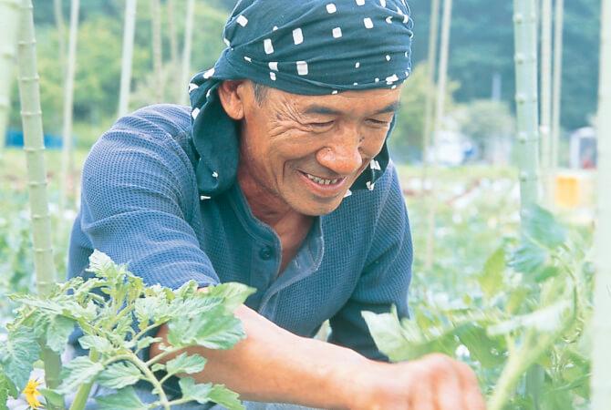 土作り40年。高原野菜の生産者・大西一幸さん