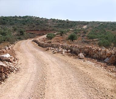 DAFDAF基金,イスラエル,パレスチナ