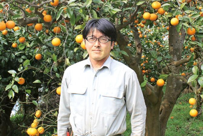 人間にとっておいしいものは動物にとっても同じく。「近ごろはカラスや猿の被害も多く、収穫が先か彼らが先か競争です」と南伊豆太陽苑生産者グループの島崎孝行さん。