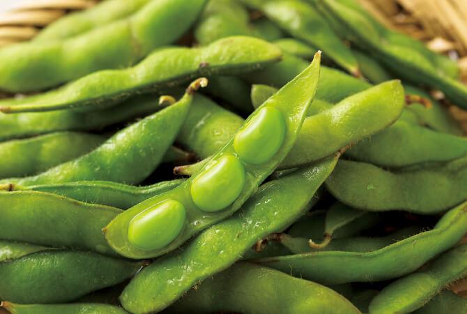 さやのなかには豆が大きくふくらみ重量感たっぷり。関東近郊の旬真っ盛りの枝豆をお届けできるのは、今週、来週ご注文分のみです