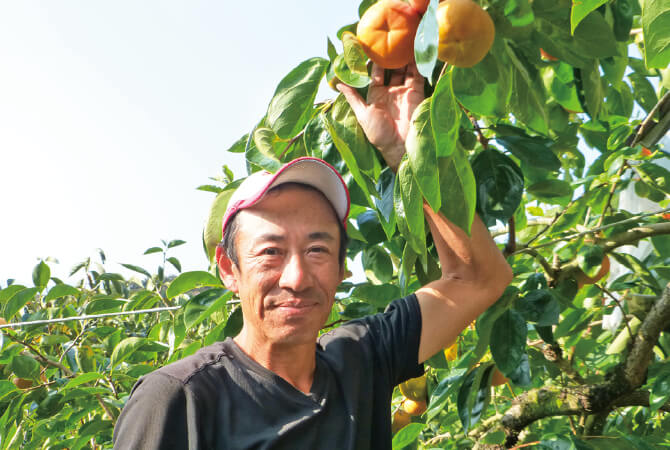 奈良県で柿作りをしている仁司与士久さん