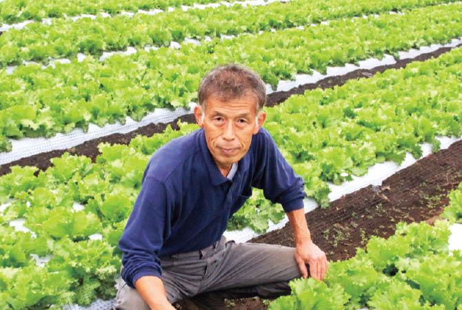 レタス農家の飯塚一実さん