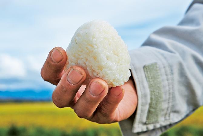 あきたこまちの新米で作ったつやつやの塩むすび