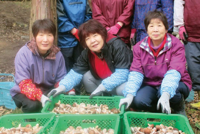 鳥取県鳥取市 菌興椎茸協同組合の皆さん