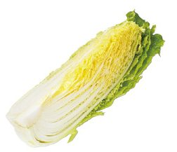 大地を守る会の『白菜』