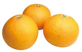 大地を守る会の『清見オレンジ』