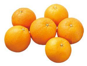 大地を守る会の『福原オレンジ』