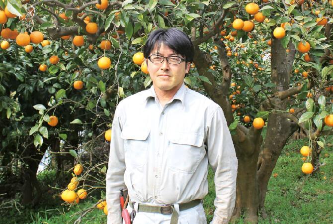静岡県南伊豆町 南伊豆太陽苑生産者グループ 島崎孝行さん