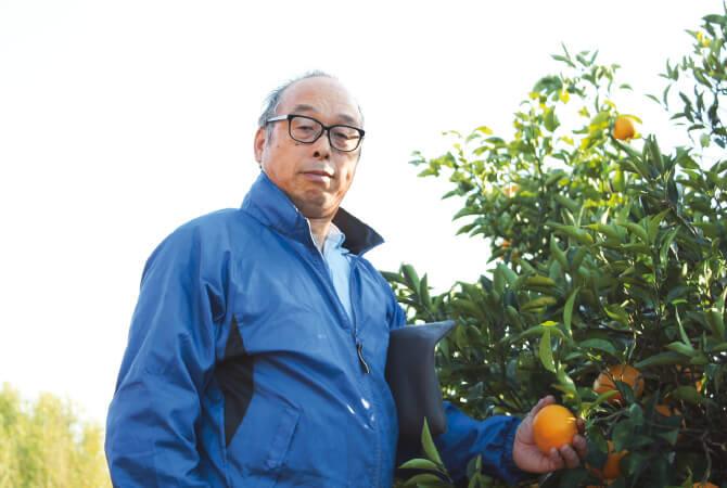大地を守る会『樹上で完熟させたさわやか甘夏』生産者 静岡県静岡市で代々続く柑橘農家の望月美秀さん