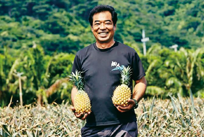 国産のパイナップル生産者、沖縄県石垣市 真南風の会 平安名 貞市さん