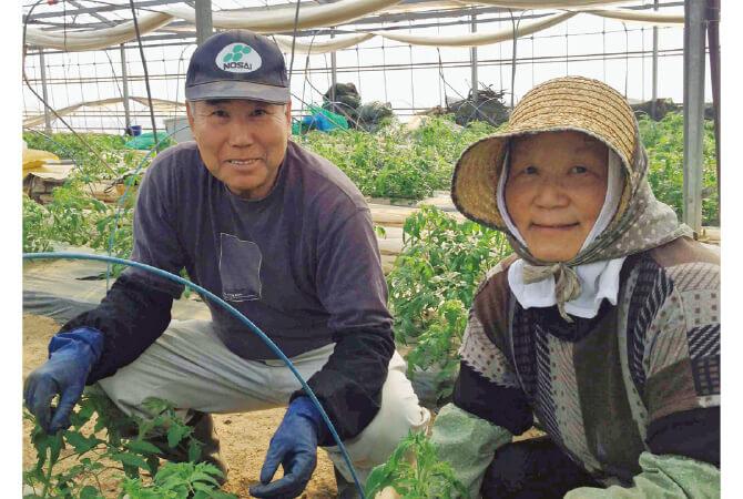 トマト生産者・福島県玉川村福島わかば会の高林邦男さんと廣子さん