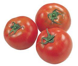 大地を守る会の『水切り栽培のうま夏トマト』