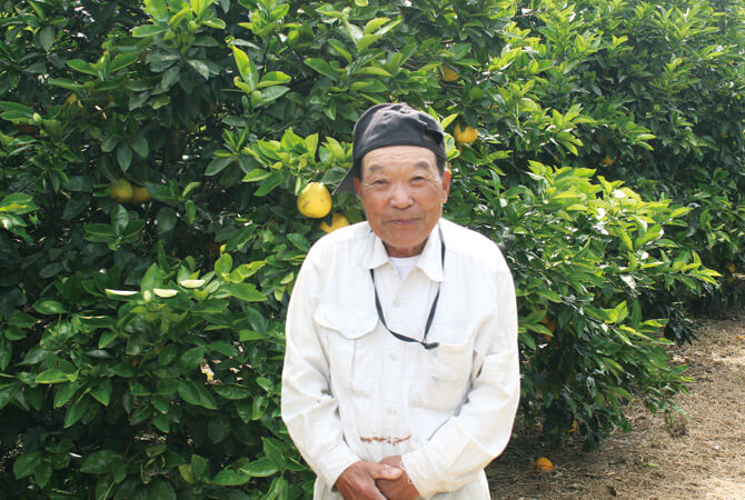 『果汁を食べる河内晩柑』の生産者、愛媛県愛南町 無茶々園 下田道雄さん