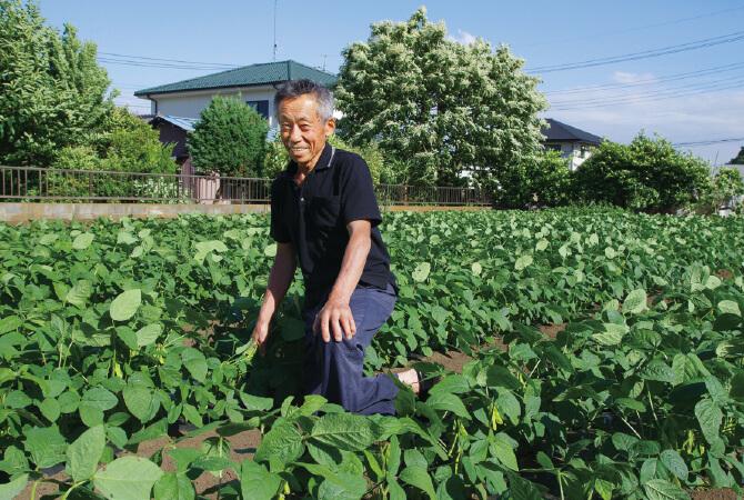 『うま味ふっくら枝豆』の生産者、埼玉県志木市三枝晃男さん