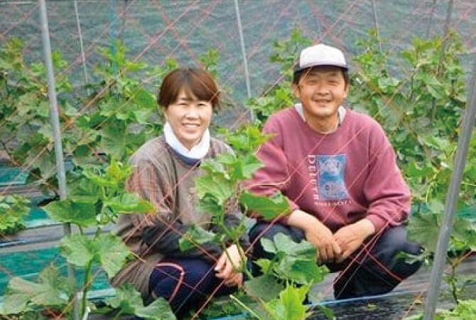 『ズッキーニ』の生産者、群馬県高崎市くらぶち草の会佐藤朝昭さん(右)とおつれあいの和子さん