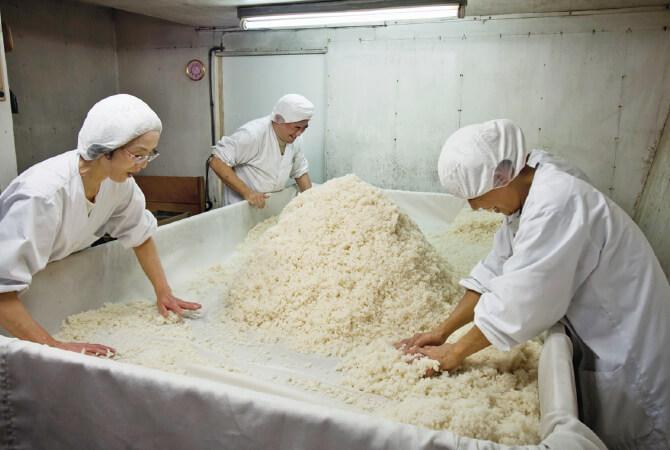 麹から造る「手作り甘酒」。種麹をまき、麹菌を一粒一粒に付けるなど麹室での作業。