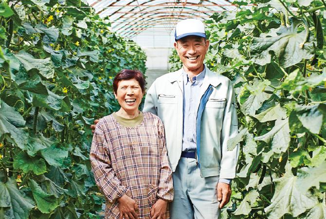 『おしろいきゅうり』生産者、福島県郡山市 福島わかば会 鈴木正幸さん(右) 栄子さん(左)