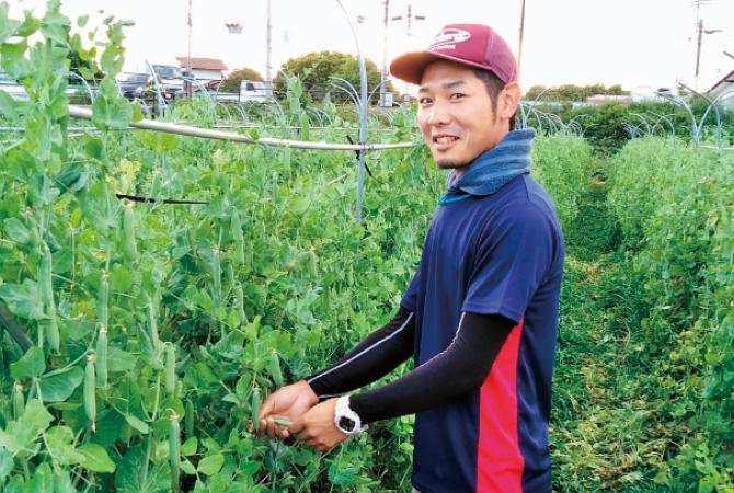 『おしろいきゅうり』生産者、福島県福島市福島わかば会   渡辺悠雅さん