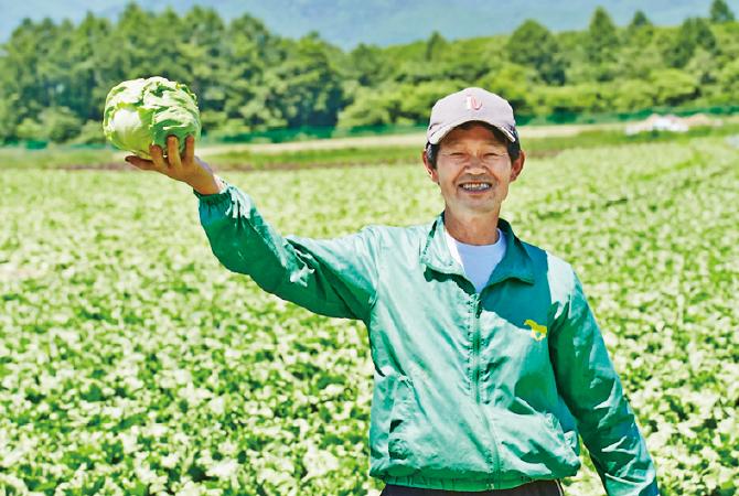 キャベツ・レタスの生産者、長野県南牧村の青野勝さん
