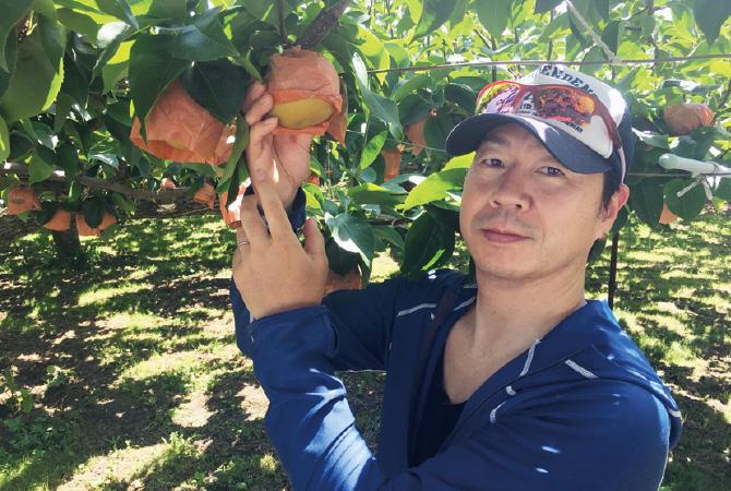 甘さしたたる南水(梨)の生産者、赤石果樹出荷組合 桜井智史さん