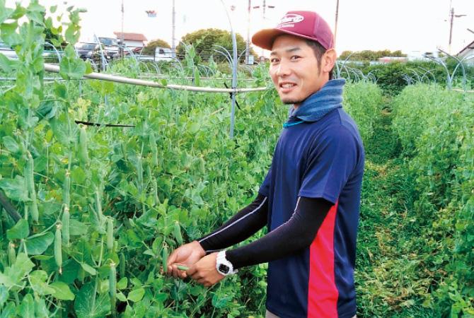 おしろいきゅうりの生産者、福島県福島市福島わかば会  渡辺悠雅さん