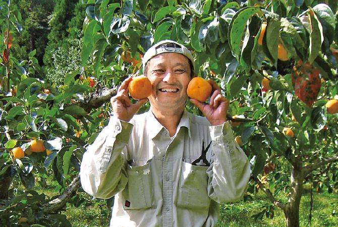 種なし柿(刀根柿または平核無柿)生産者、新潟県佐渡市矢田農園 矢田徹夫さん