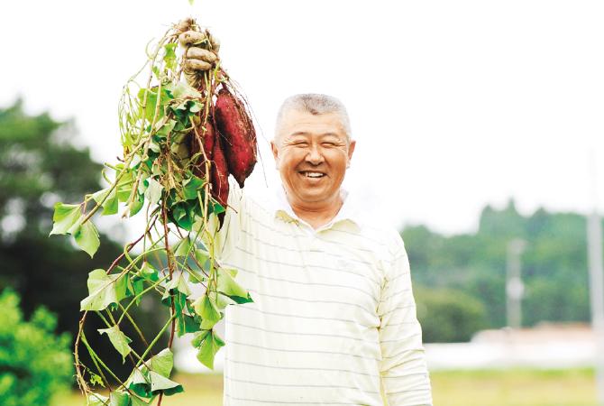 ほくほくさつまいも・紅あずま生産者、茨城県行方市  堀田信宏さん