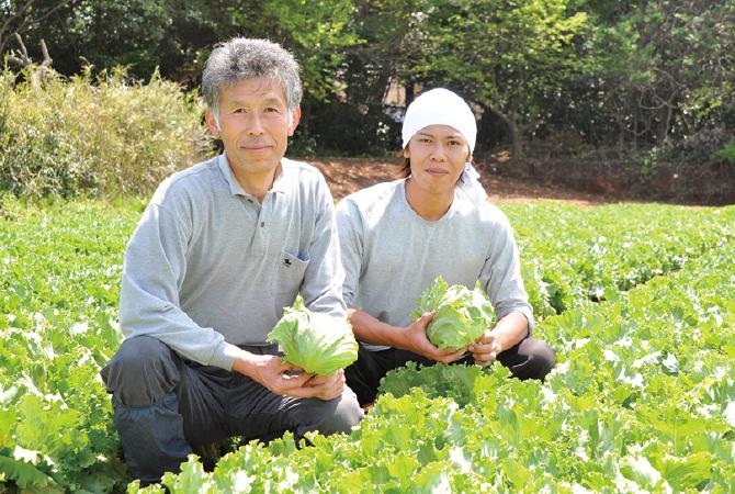 飯塚一実さんの秋採れレタス生産者、茨城県坂東市 飯塚一実さん(左)と息子の雅弘さん