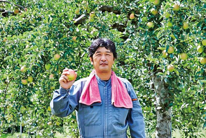 清明(りんご)生産者、羽山園芸組合(福島県二本松市)   武藤善幸さん