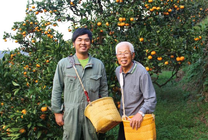 和歌山・川端グループの温州みかん生産者、羽和歌山県海南市川端敬グループ 川端敬さん(右)と息子の宏幸さん